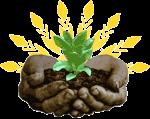 plant_4_288