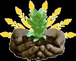 plant_5_288