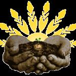 plant_2_288